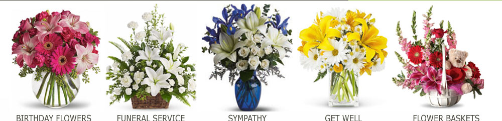 different kinds flowers